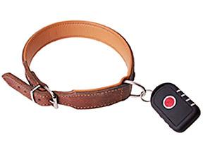 """Der GPS-Sender f�r Hunde von """"Wo ist Lilly?"""" wird einfach am Halsband des Hundes befestigt."""