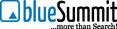 Logo blueSummit