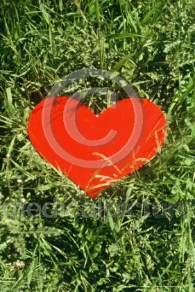 Herz im Gras
