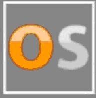 Orangescouts.com Firmenlogo